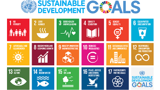 Driving business engagement with the Sustainable Development Goals
