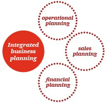 Business integration plan