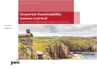 Corporate Sustainability Lessons Learned: Environmental volunteering