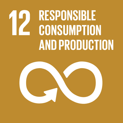 12 - Reponsible consumption and production